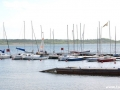 eglarstwo-jeziro-tarnobrzeskie-6