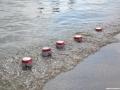 jezioro-tarnobrzeskie-28