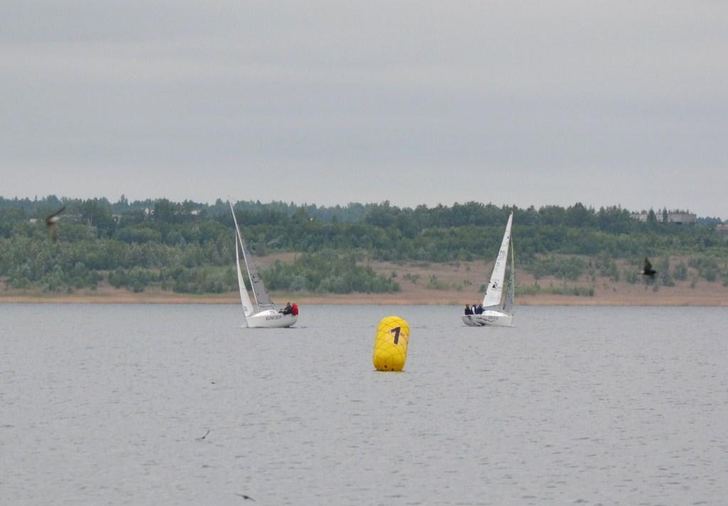 regaty-jezioro-tarnobrzeskie-12