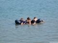 jezioro-tarnobrzeskie-7