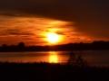 jezioro-tarnobrzeskie-zachd-s
