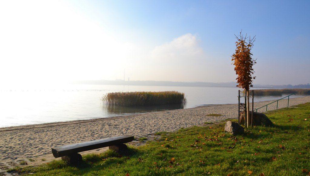 spacer-jezioro-tarnobrzeskie-5