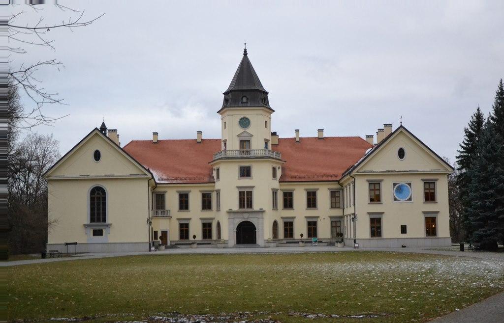 zamek dzikowski