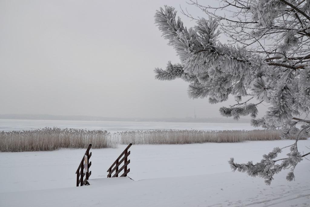 zima nad jeziorem tarnobrzeskim