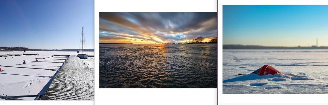zdjec-znad-jeziora-tarnobrzeskiego