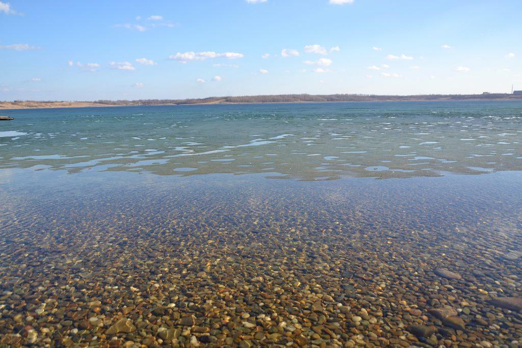 oznaki wiosny nad jeziorem tarnobrzeskim