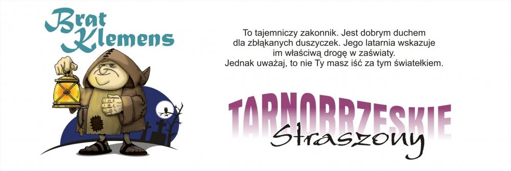 strasznie fajny festiwal nad jeziorem tarnobrzeskim4