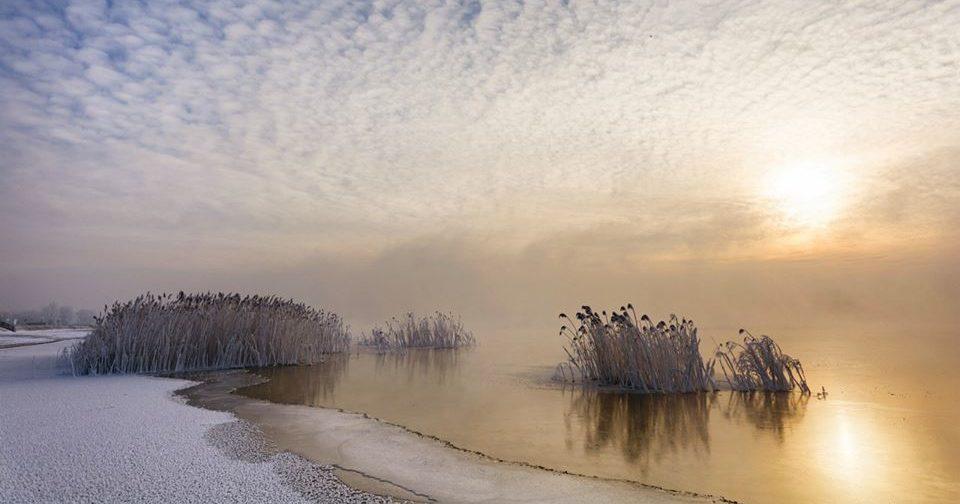 zdjęcie jeziora tarnobrzeskiego nikoniarze