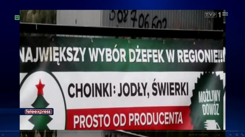 Choinki z Tarnobrzega