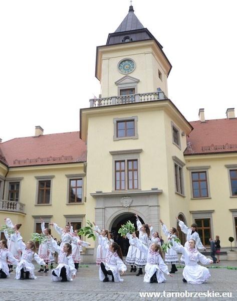 zamek-dzikowski-jezioro-7