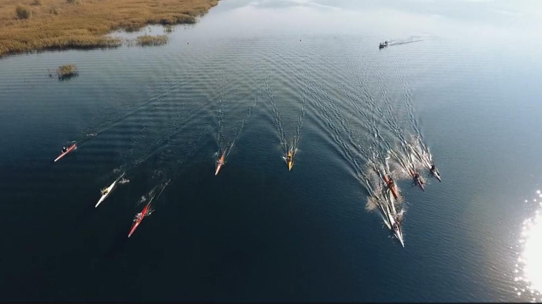 jezioro tarnobrzeskie kajakarzy